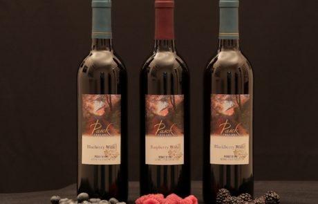 שיכר פירות יער מיקב הבוטיק פסק Pasek winery