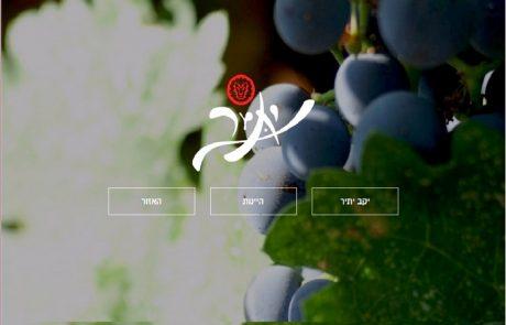 אולי אתר היין הטוב והיפה בארץ. יתיר. כנסו כנסו